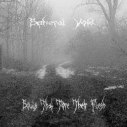 Spheral Void - Souls That Tore Their Flesh