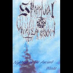 Spiritual Wintermoon - Nightfall in the Ancient Woods