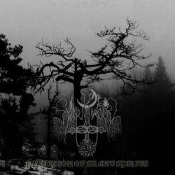 Spiritwood - Pantheon of Silent Spirits
