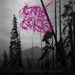 Reviews for Staryj Kiev / Старый Киев - Call of Satanic Woods