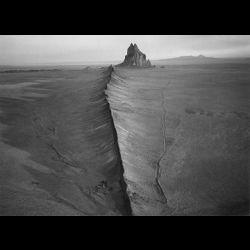 Stavves - The Desert Gloats