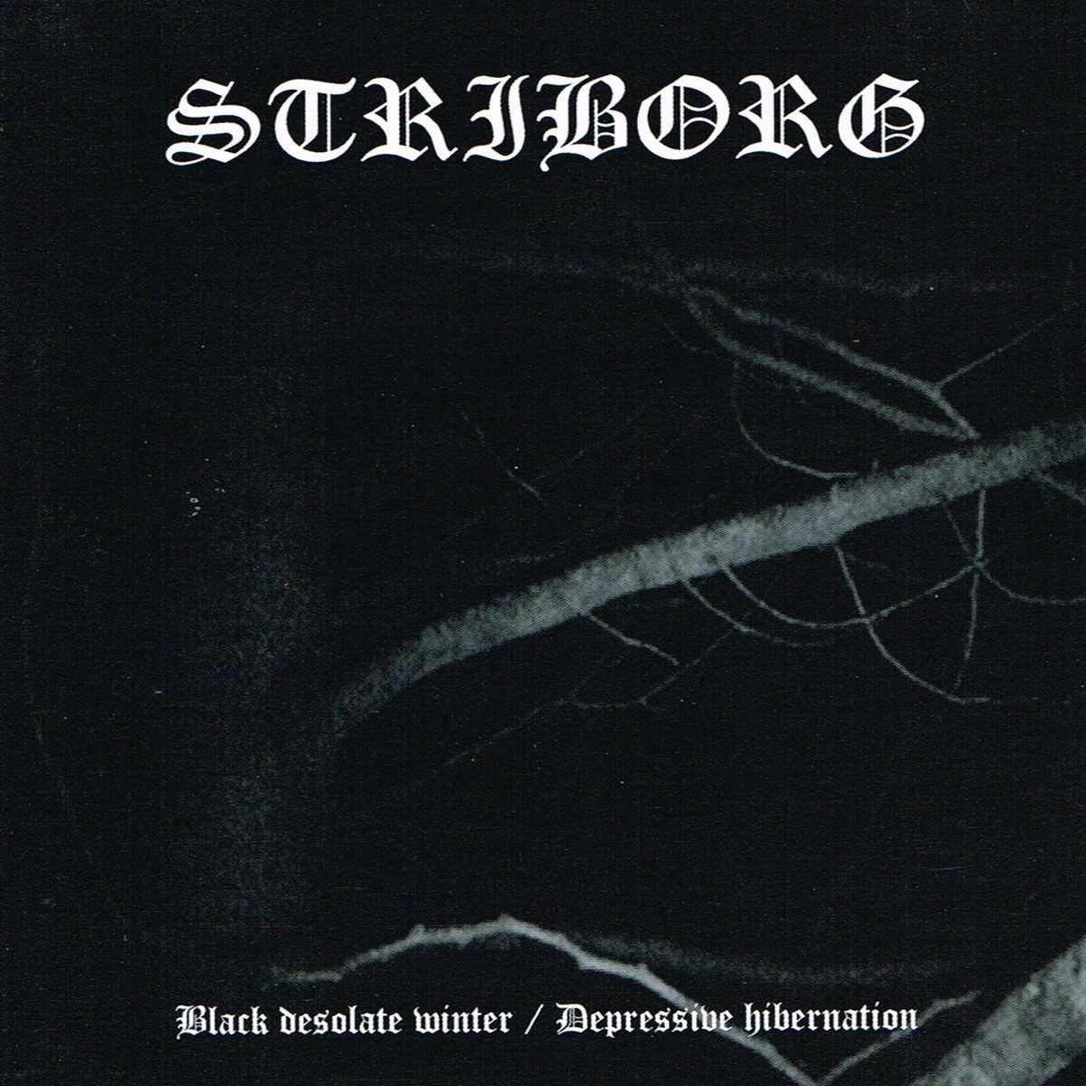 Review for Striborg - Black Desolate Winter / Depressive Hibernation