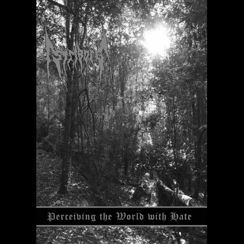 Review for Striborg - Perceiving the World with Hate