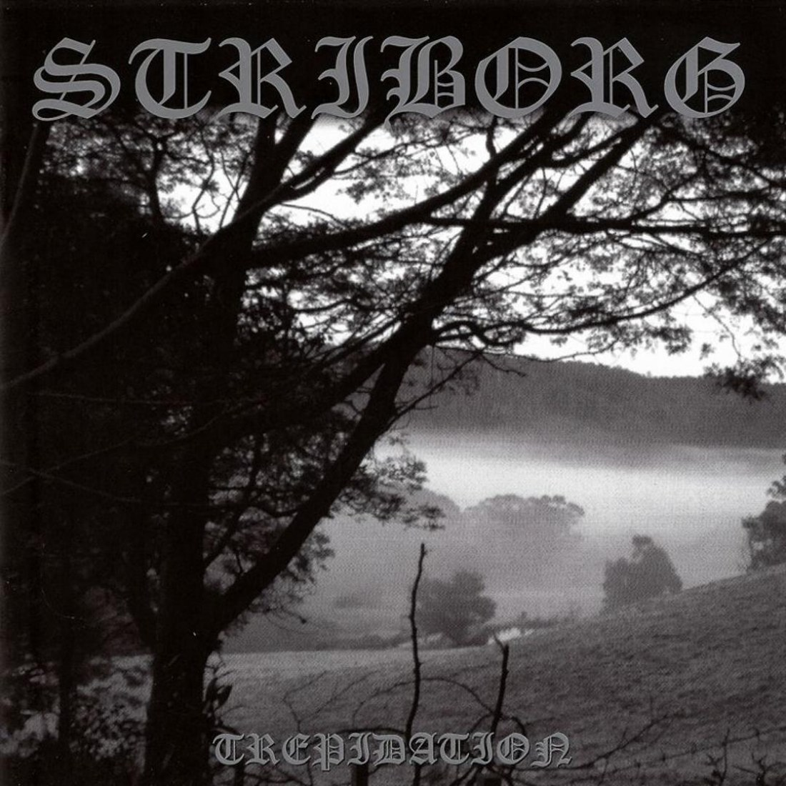 Review for Striborg - Trepidation