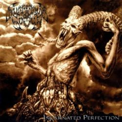 Reviews for Suffering Souls - Incarnated Perfection