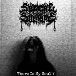 Review for Suicidal Solitude - Where Is My Soul?