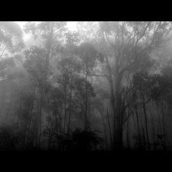Suldusk - To a Vestige of Purest Light