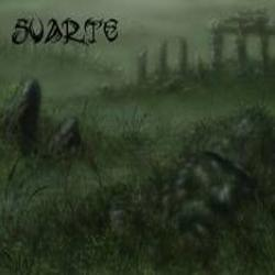 Review for Svarte - The Lands of Forlorn