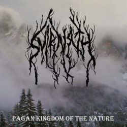 Review for Svirnath - Pagan Kingdom of the Nature