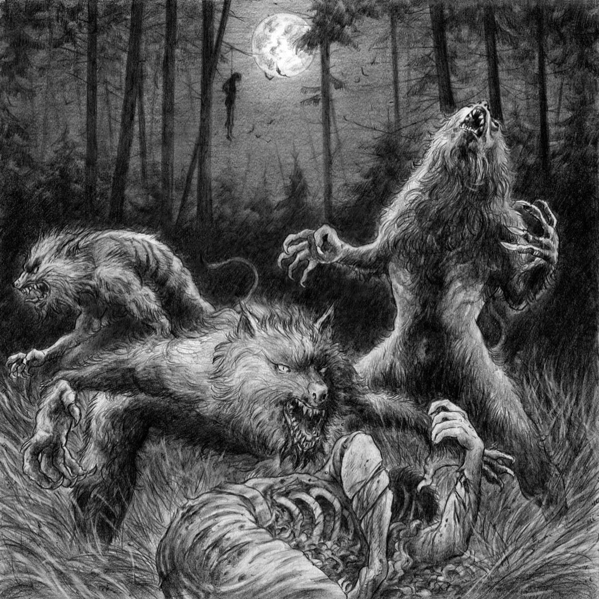 Szary Wilk - Wrath