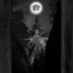 Review for Taatsi - Amidst the Trees