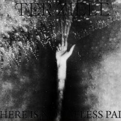 Reviews for Ter Ziele - There Is No Useless Pain