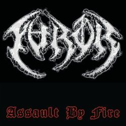 Reviews for The Furor - Assault by Fire