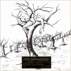 Reviews for The Wandering - The Forest in Your Name