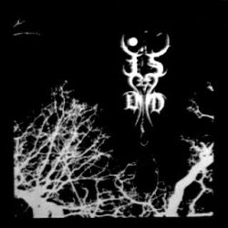 Review for Thou Shell of Death - The Forest of Shadows