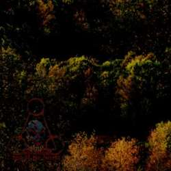 Reviews for Tjolgtjar - Ikarikitomidun, Lord of the Forest