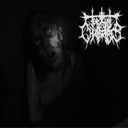 Torture Chamber - Into the Void