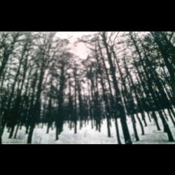 Reviews for Tragedy Begins - Winter of Woe