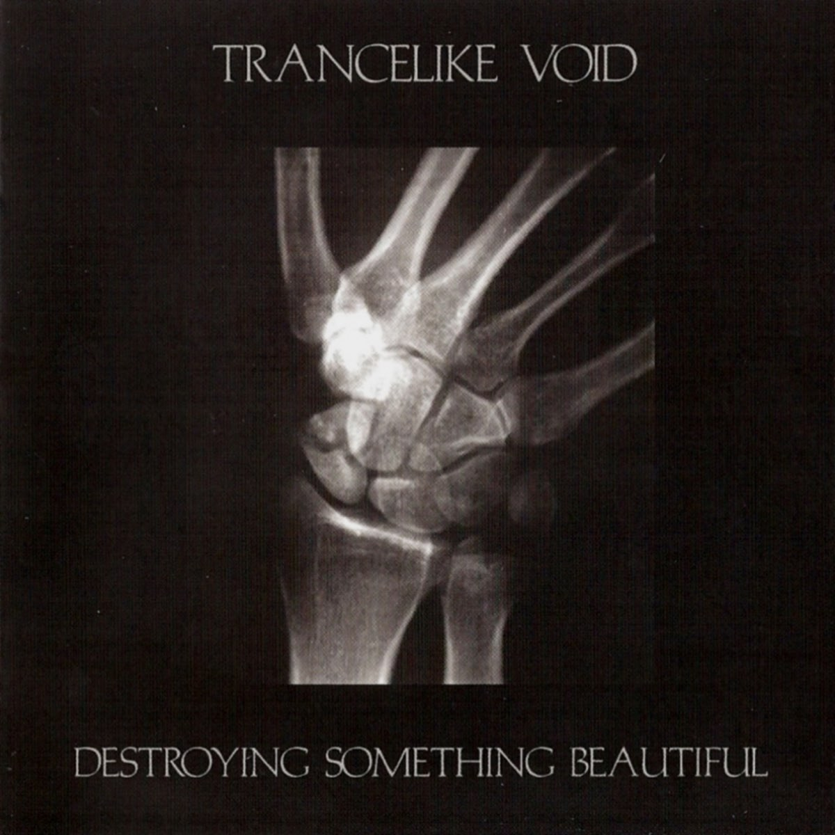Review for Trancelike Void - Destroying Something Beautiful