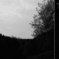 Tuathail - Augury