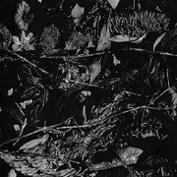 Turia - Dede Kondre