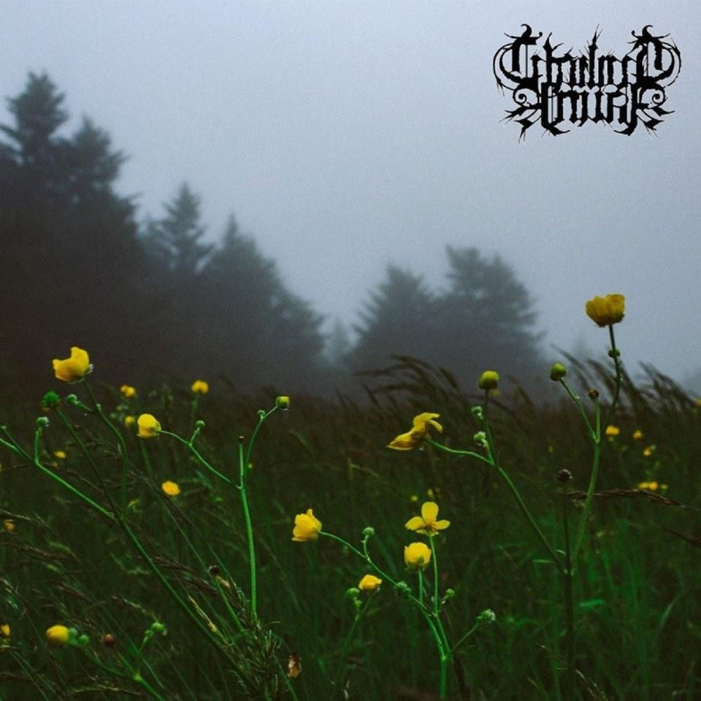 Twilight Fauna - Where Birds Sing My Name
