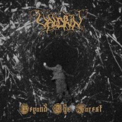 Valdrin - Beyond the Forest