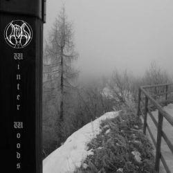 Reviews for Vardan - Winter Woods