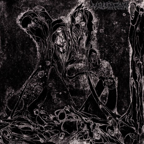 Best New Zealander Black Metal album: 'Vassafor - Obsidian Codex'