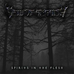 Veil of Anguish - Spirits in the Flesh