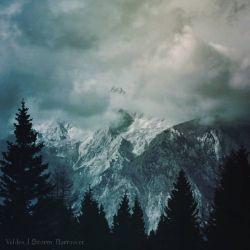 Reviews for Veldes - Storm Borrower