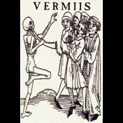 Vermiis - Les Rites des Goules