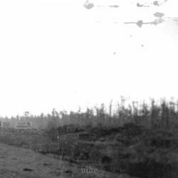 Reviews for Vide (USA) [α] - Demo