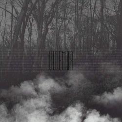 Videmur - Through Endless Fields of Grey