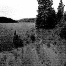 Vilk - Journey Through the Realms of Night
