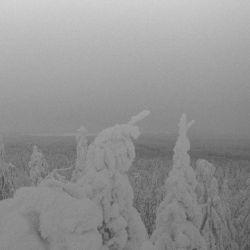 Vintlechkeit - Dode Menn om Vinteren...