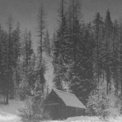 Reviews for Vintlechkeit - Dype i Vinterskogens...