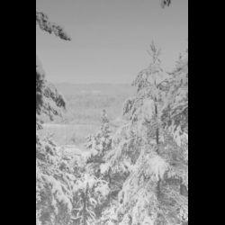 Reviews for Vintlechkeit - Svarta...