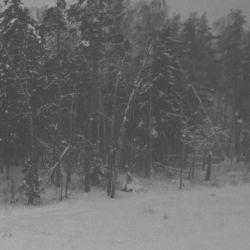 Reviews for Vintlechkeit - Utfordre Vintermørke...