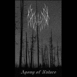 Reviews for Viselnik / Висельник - Agony of Nature