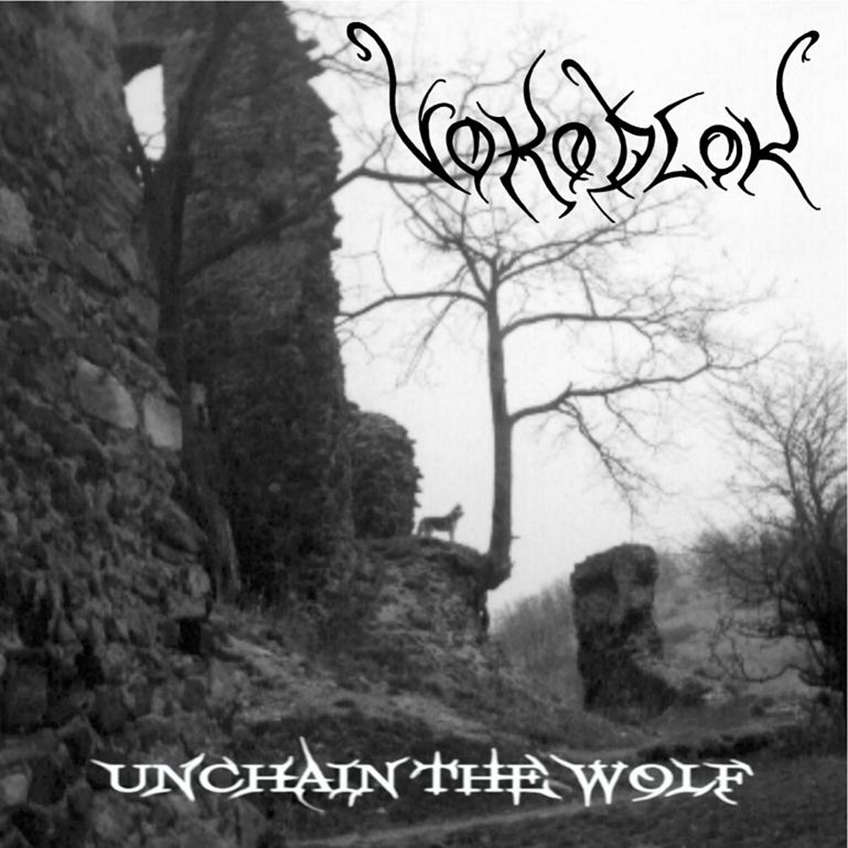 Review for Vokodlok - Unchain the Wolf