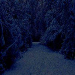 Vondt - Frozen Tears
