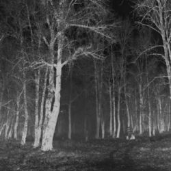 Vrede - The Malefic Darkness