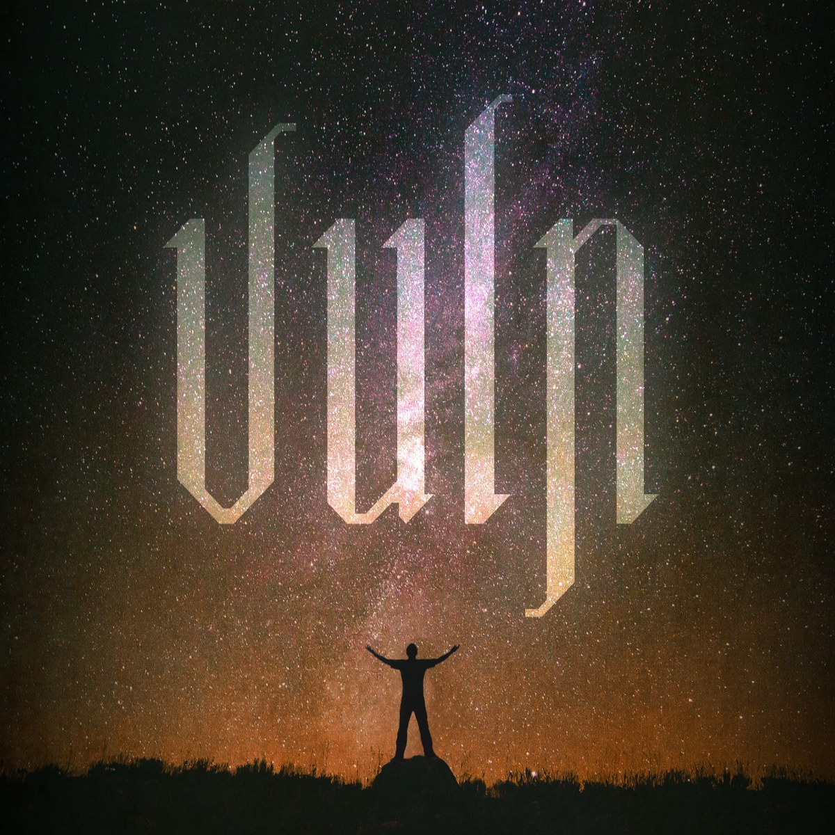 Reviews for Vuln - Demo