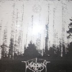 Waldsterben - Voices in the Night