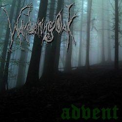Wandering Oak - Advent