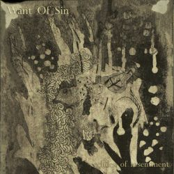 Reviews for Want of Sin - Echoes of Resentment