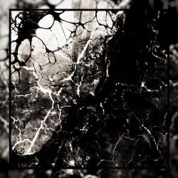 Warheart (USA) - Mutation