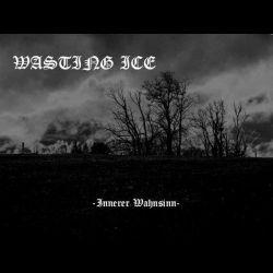 Wasting Ice - Innerer Wahnsinn