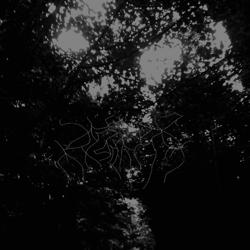 Reviews for When Woods Make Graves - This Forest That Will Eclipse the Sky